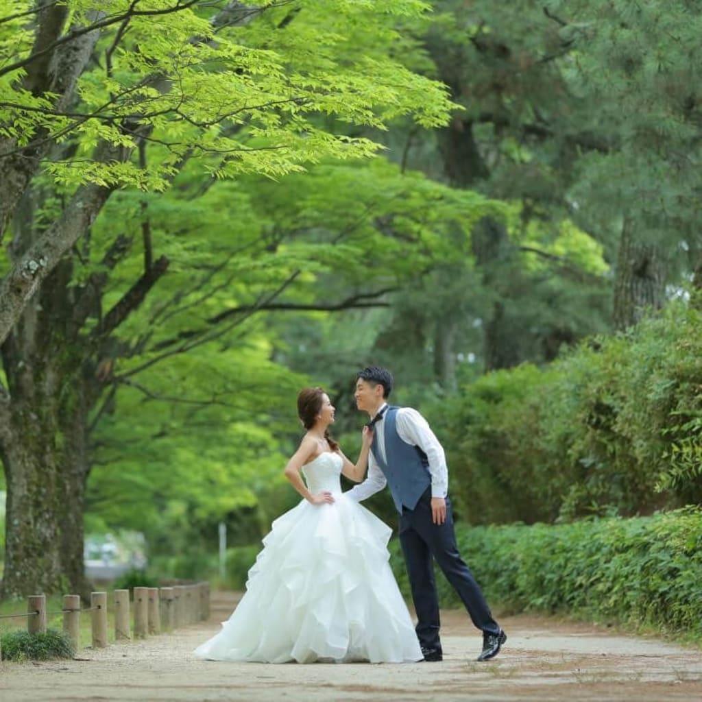 京都自然公園ロケーション_お客様ギャラリー