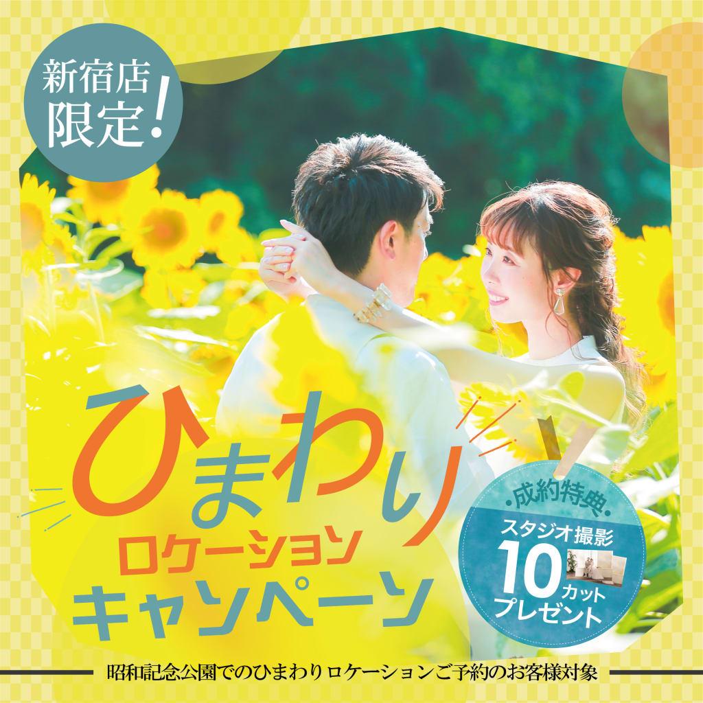 ひまわりロケーション希望の方、スタジオ撮影プレゼントキャンペーン!!