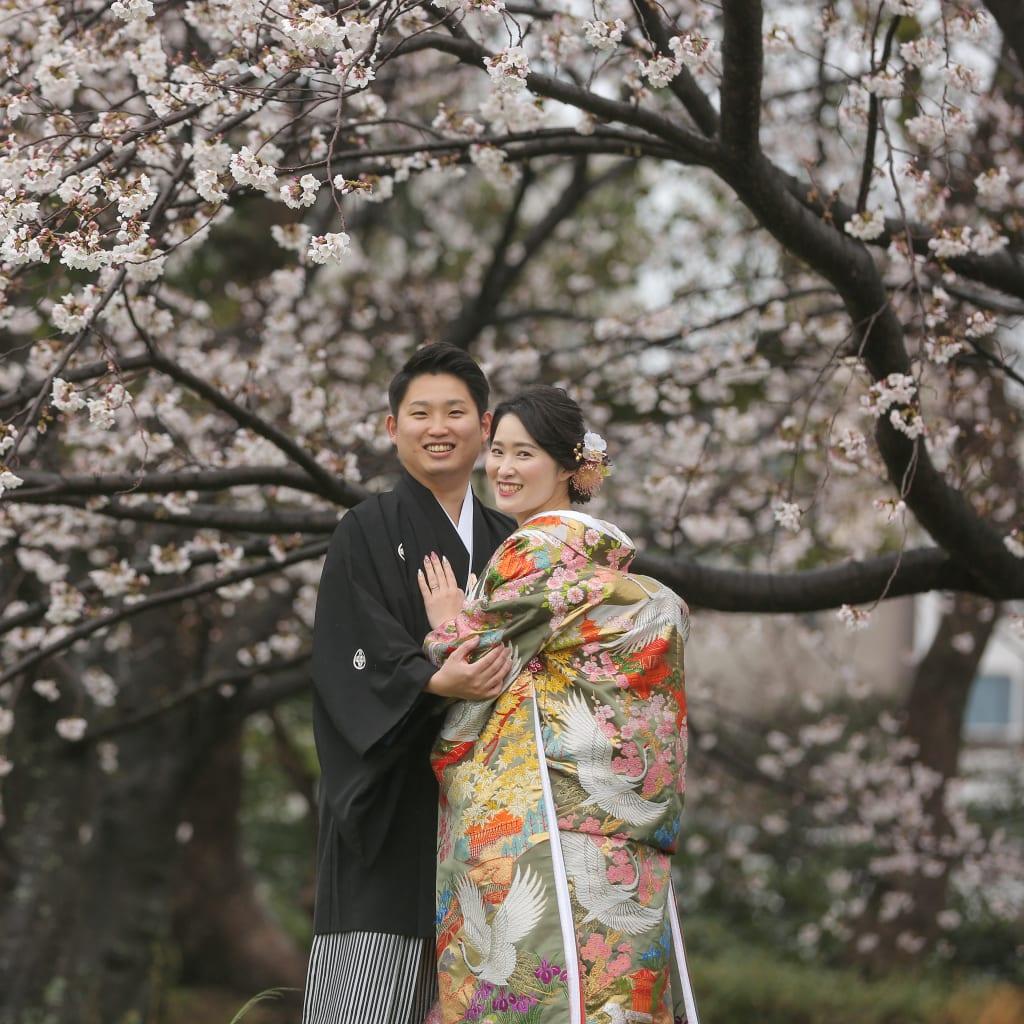 早くも桜咲きました!