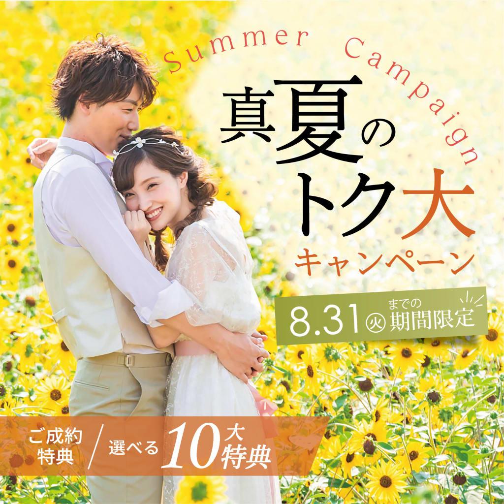 真夏のトク大キャンペーン🌻**