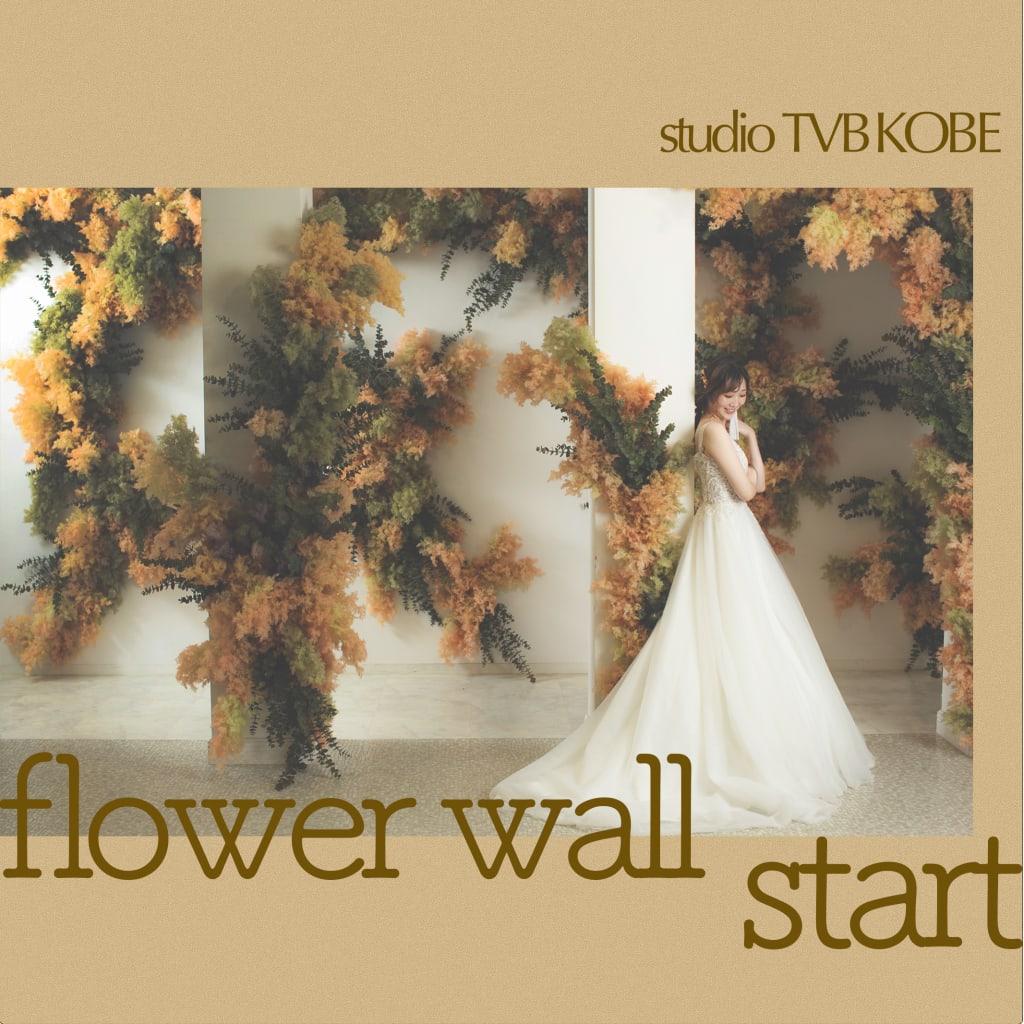 flowerwall start!!