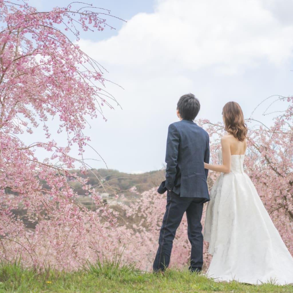 洋装ロケーション 飯綱山公園