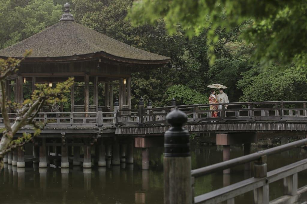 1奈良公園15.jpg