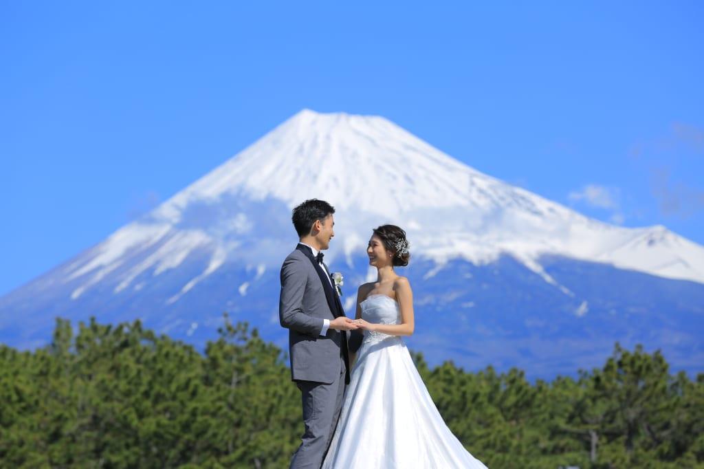 富士洋装ライトプラン