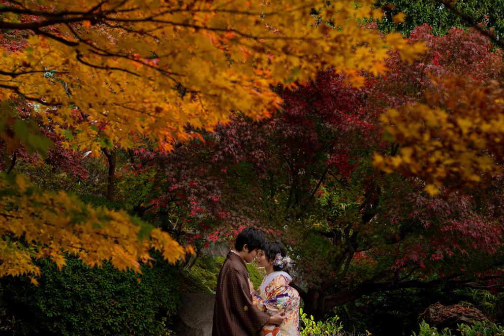 秋おすすめ