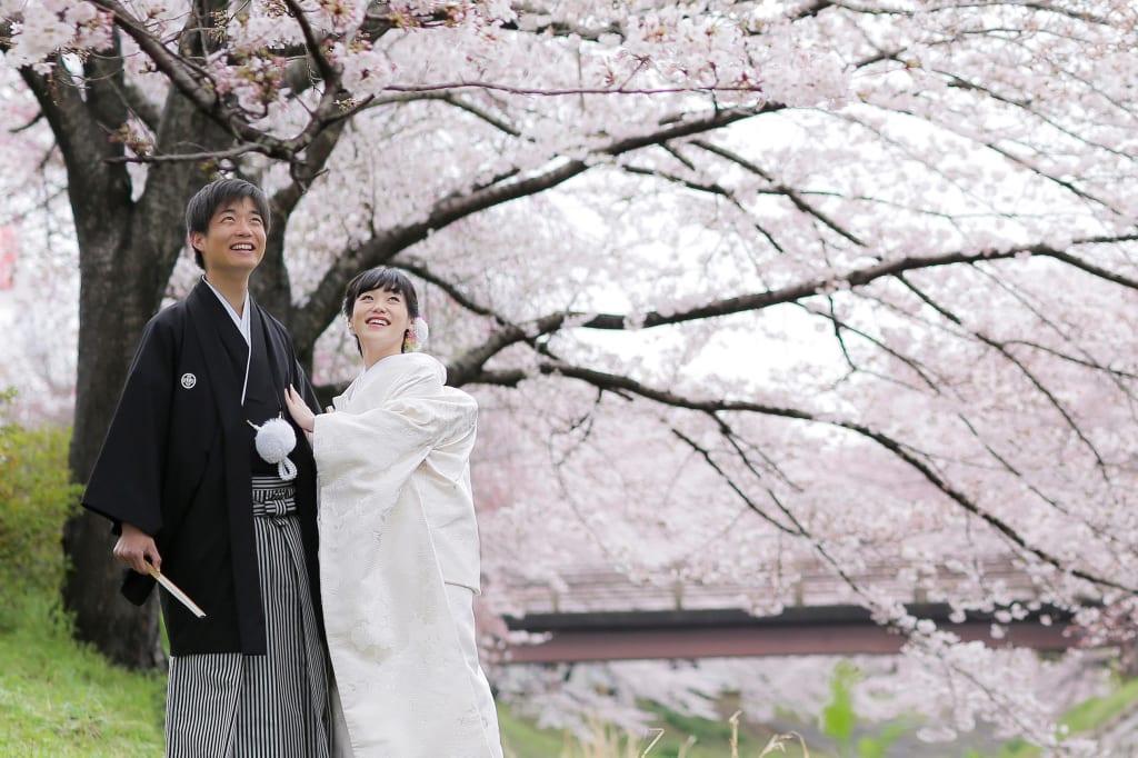 佐保川ロケーションフォト