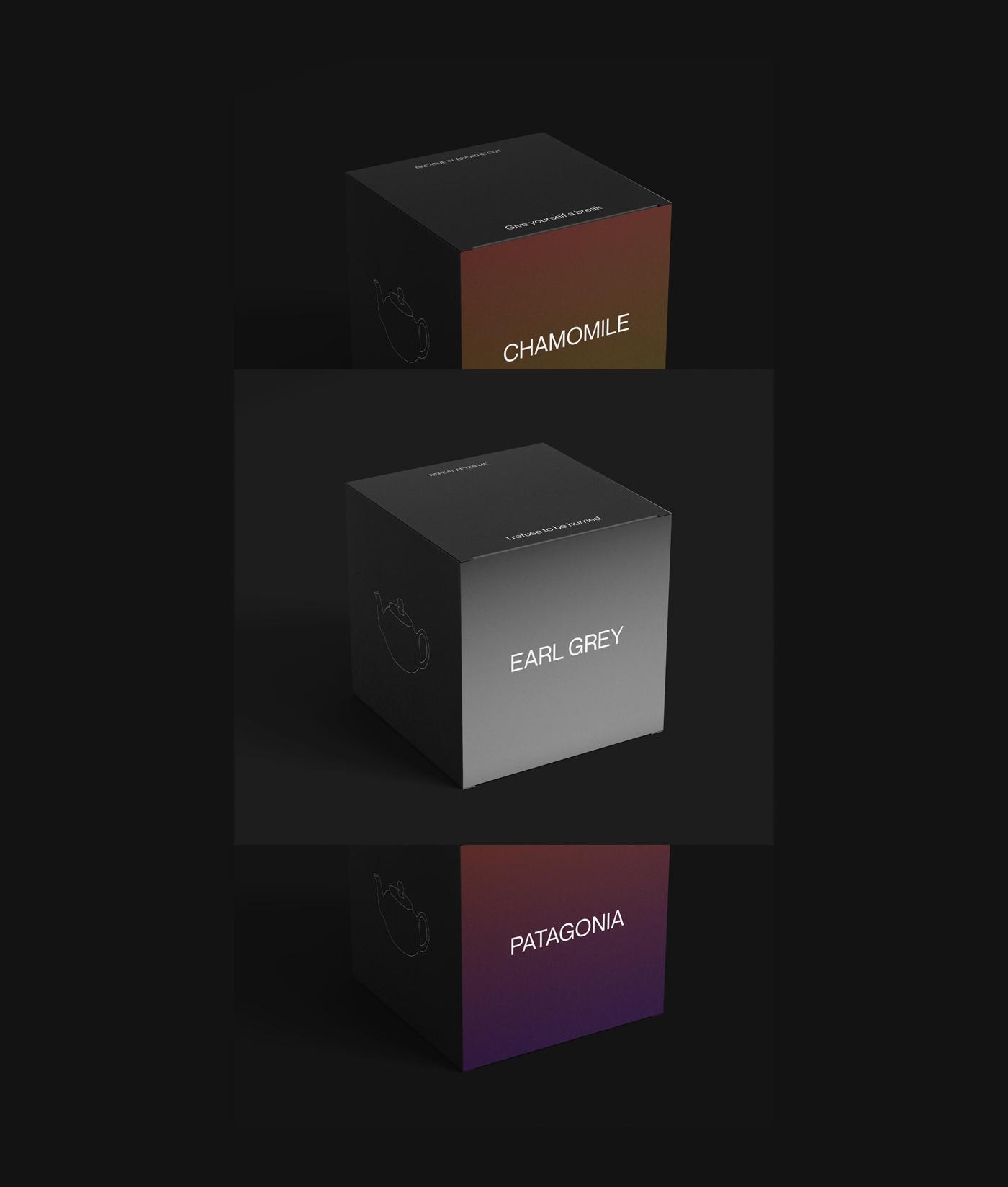 Tea boxes - Packaging design for Capital Tea. Concept work by Postdigitalist.