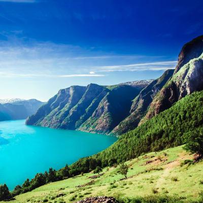 Bergen med Sognefjord och Hardangervidda