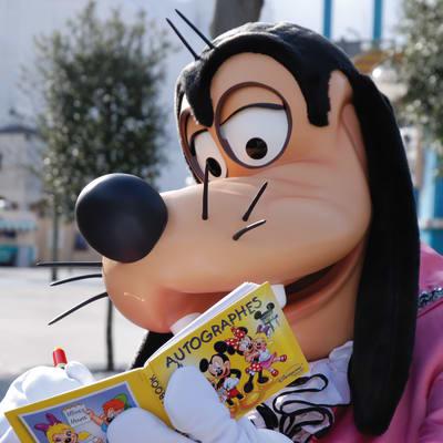 Disneyland Paris - Direkt