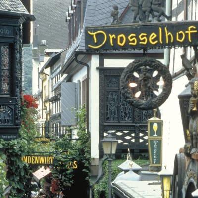 Rhen & Mosel - tyska vinvägar