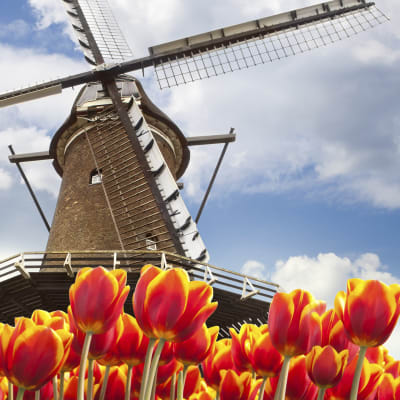 Holland med Floriaden