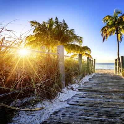 Florida med kryss i Karibien