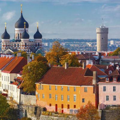 Tallinn - weekendkryss