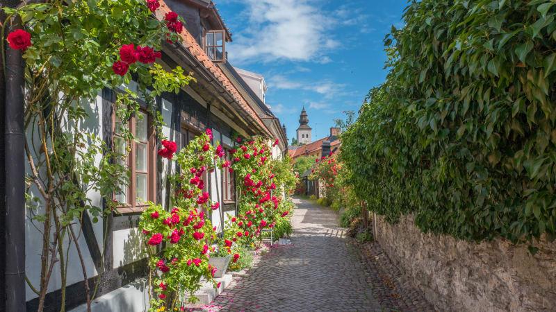 En dag i Visby och sedan hemresa