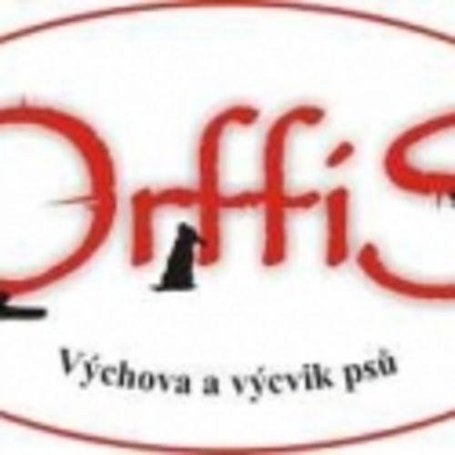 Orffis