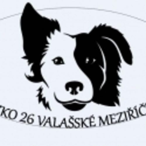 ZKO Valašské Meziříčí