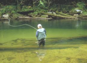 Fly Fishing at Blackfish Lodge