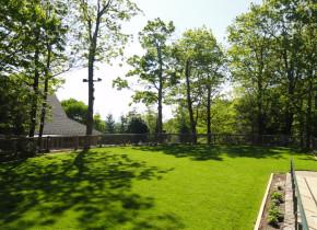Yard view at Wintergreen Resort