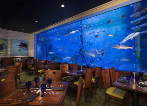 Dining at Guy Harvey Outpost Resort.