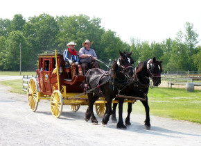 Carriage ride at Double JJ Resort.