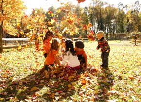 Jumping in Leaves at Pinegrove Ranch