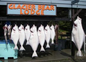 Fishing at Glacier Bear Lodge.