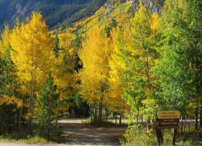 Fall colors at Rocky Mountain Lodge & Cabins.