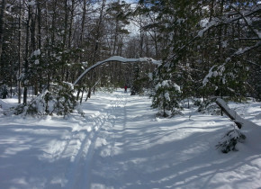 Cross country skiing at Idle Hours Resort.