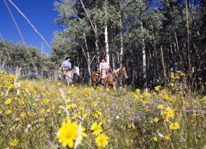 Horseback riding near The Charter at Beaver Creek.