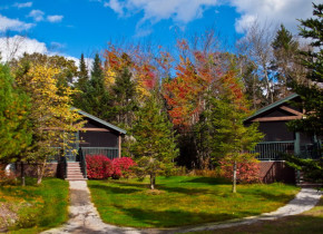 Cabins at Point Lookout Resort.