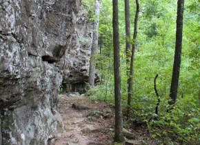 Hiking at Azalea Falls Lodge.