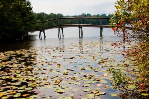 Bridge near Eagles Mere Inn.