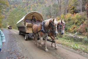 Wagon rides near Penn Wells Hotel & Lodge.