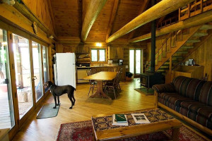 Pets welcome at Freshwater Vacation Rentals.