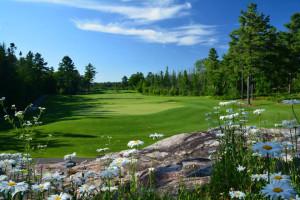 Golf near Sherwood Inn.