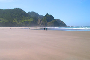 Beautiful Beaches Near Grey Fox Inc, Vacations