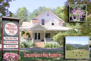 Exterior view of Misty Mountain Inn & Cottages.