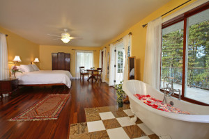 Guest room at Hawaii Island Retreat.