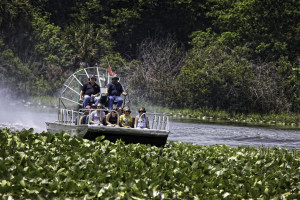 Air boat at Westgate River Ranch Resort & Rodeo.