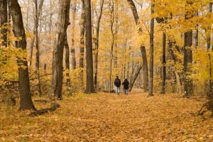 Couple walking through woods at Spicer Green Lake Resort.