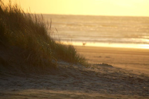 The beach at Beachhouse Vacation Rentals.