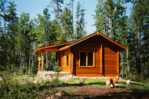Bear cabin at Mica Mountain Lodge & Log Cabins.
