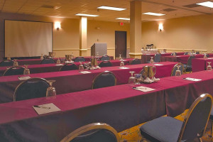 Meeting space at Atrium Hotel and Suites DFW Airport South.