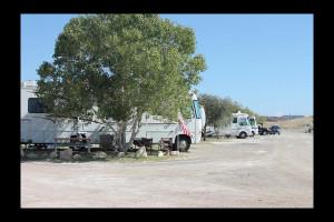 RV campground at Big Bend Resort & Adventures.