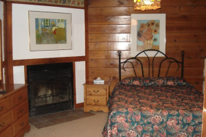 Guest room at Hôtel Alpine Inn.