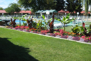 Outdoor pool at Okanagan Seasons Resort.