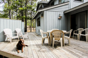 Pet friendly accommodations at Vacasa Rentals Eagle Crest.