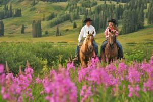 Horseback riding near The Bella Vista Estate.