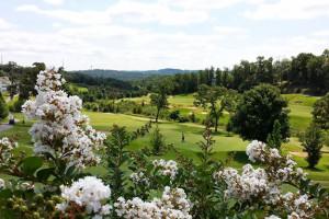 Golf course at Thousand Hills Golf Resort.