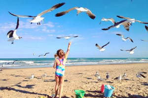Kid on beach with seagulls at Padre Getaways.